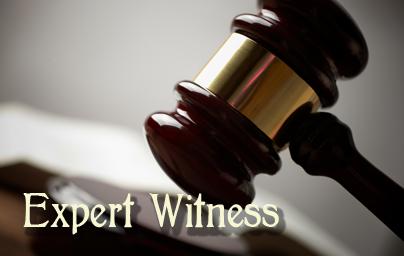 auto dealer expert witness