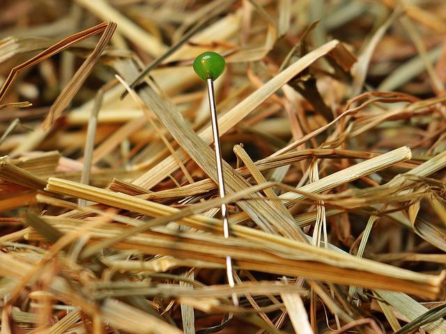 needle-in-a-haystack-1752846_640 Kirk - Kleckner